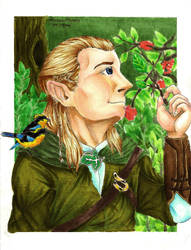 Request: Legolas - for Hanoru by PATotkaca