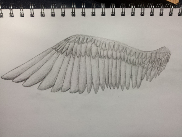 how to draw angel wings on a person