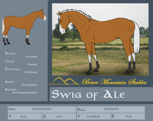 BMS Swig - Reference Sheet by TamHorse