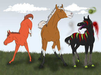 BMS Youngsters by TamHorse