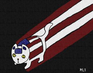 Amazing Americat! by meudy