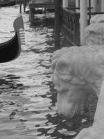 Venice by paolaquasar
