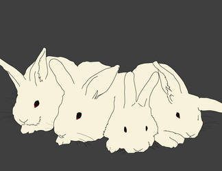 bunns, an early endeavor by thaneda