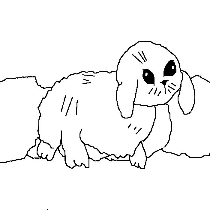 Line Art Bunny : Bunny line art by cloverflower on deviantart