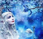 The fairy bird