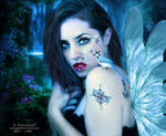 The angel  spirit