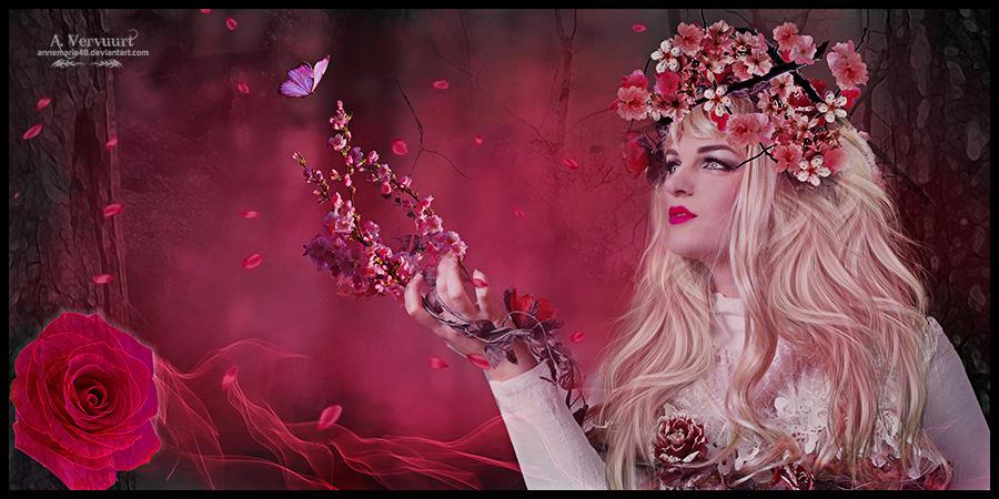 Blossom by annemaria48