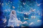 swan fairy tale