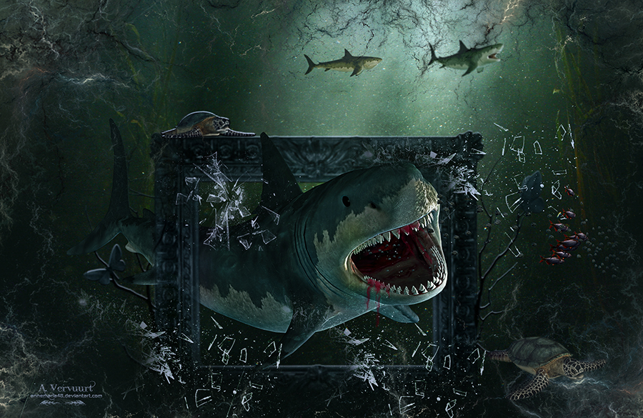 Shark by annemaria48