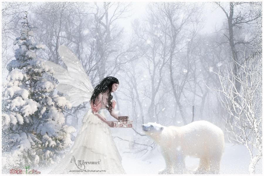 Fairy Christmas by annemaria48