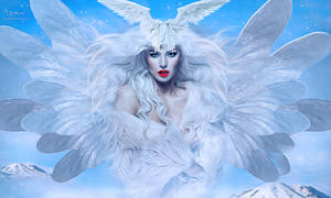 White fairy angel