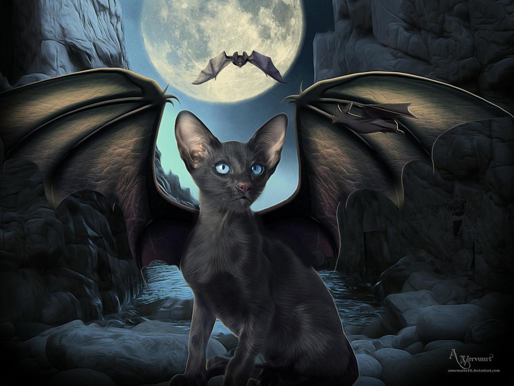 Vampire cat 2 by annemaria48