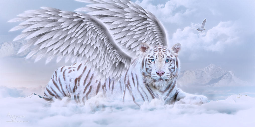 Tiger angell by annemaria48