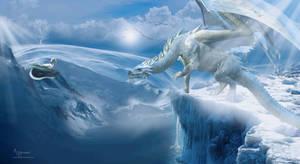 Snow Dragons