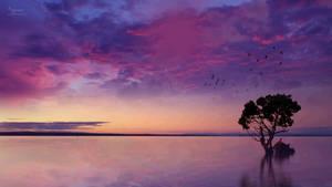 The purple landscape beauty