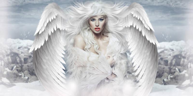 White Angel 2020 x