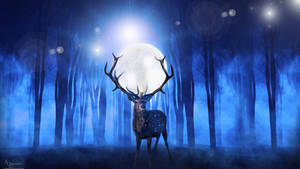 Deer surreal  live at my Youtube channel !