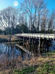 The beauty bridge amsterdamse bos