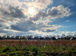 Meridiaanpark Almere Buiten