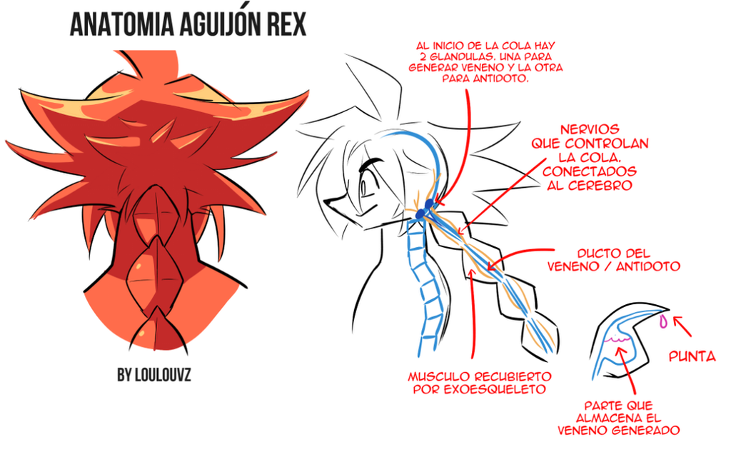 Anatomia del aguijon de Rex by LoulouVZ on DeviantArt