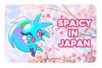 Spaicy in Japan