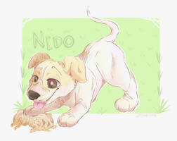 Nido the Pupper by DogwishestobeHyena