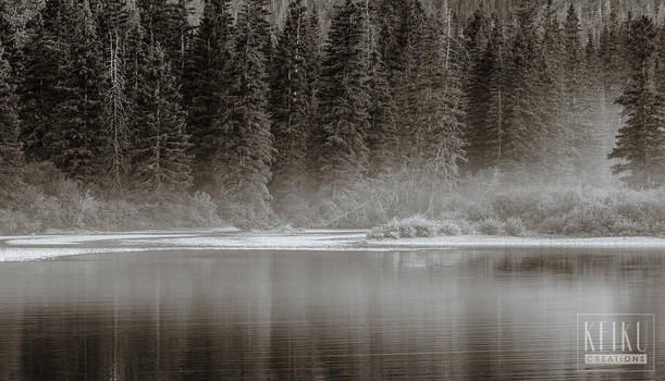 Fog Rising on Waterton Lake