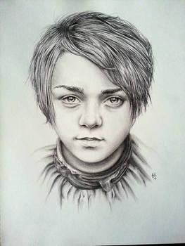 Arya Sketch