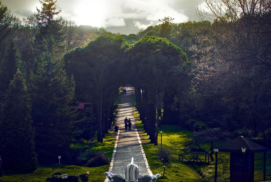 Arboretum by Xordinate
