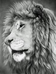 Lion by CubistPanther