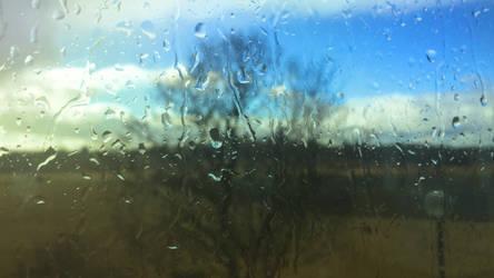 Sunlit Raindrops