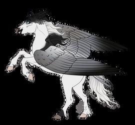 CM    Pegasus Design for Disastercorn by SagaWolf