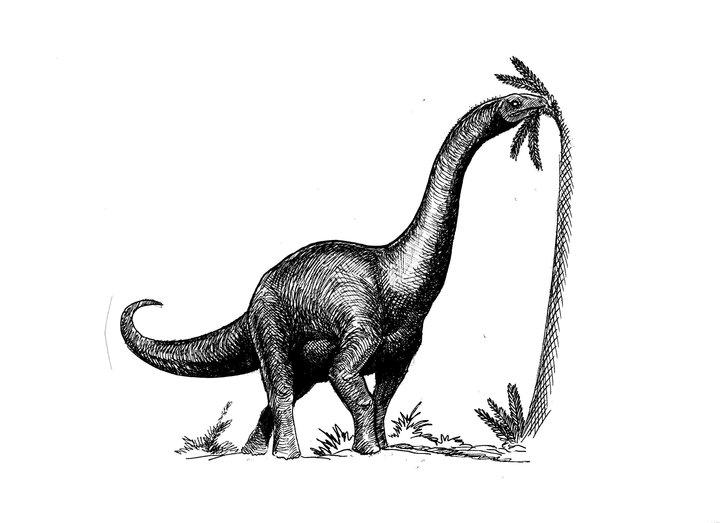 Isanosaurus