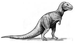 Tyrannosaurus rex  classic