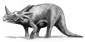 Styracosaurus  classic
