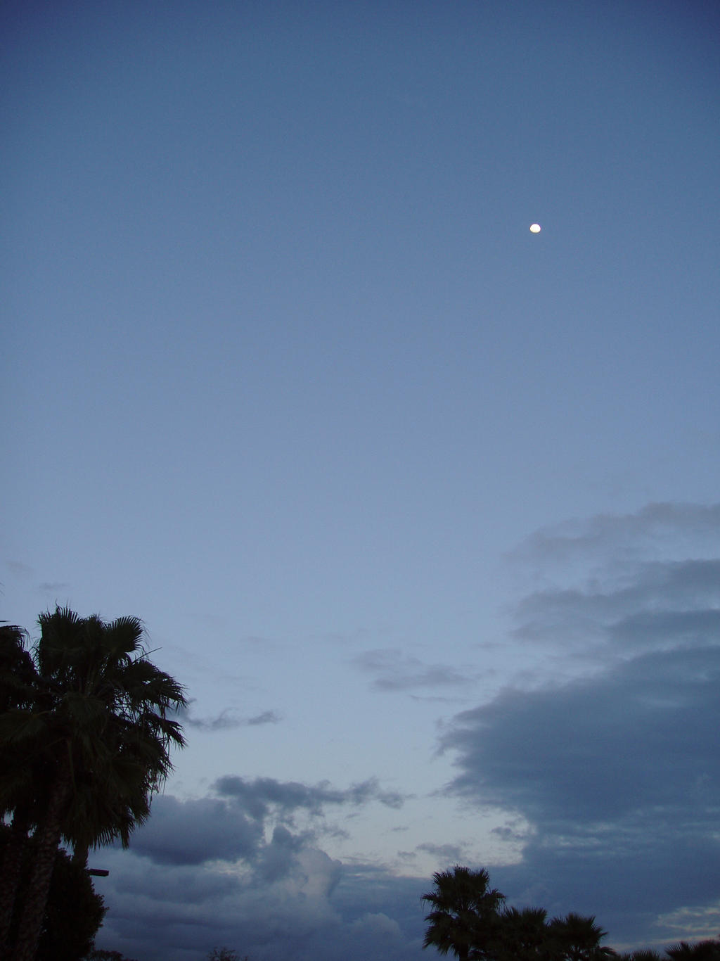 Evening sky with moon by Elliesmeria