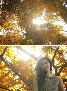 :: Daylight Springs ::