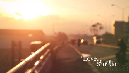 :: Love After the Sunsets ::