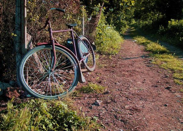 Bisiklet by seniha