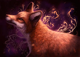 Colors of fox by kippycube