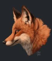 Fox doodle by kippycube