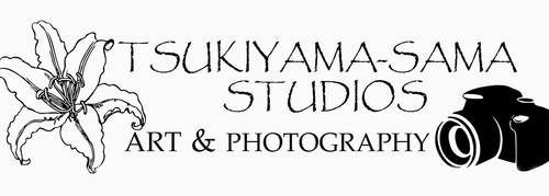 Tsukiyama sama Studios Art and Photography Banner