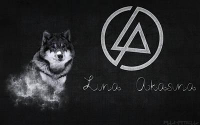 My Banner Of Linkin Park !
