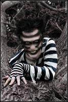 Cheshire Cat I by Nimroth