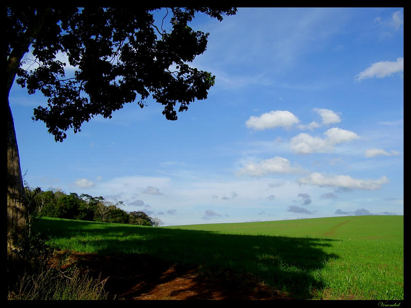 farm sky by venonded