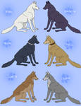 Wolf's Rain Wolf Characters by Shadowfax-Horse