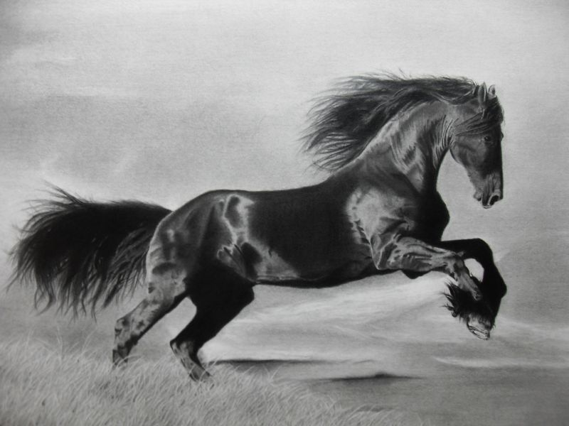 Free by MichaelNorwood