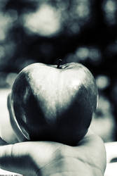 i heart apple.
