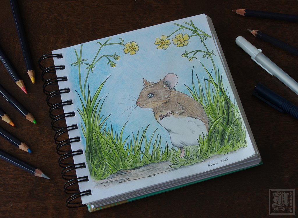 Colour Book - Mouse by Neatha