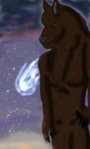 shadowwolf133's Profile Picture